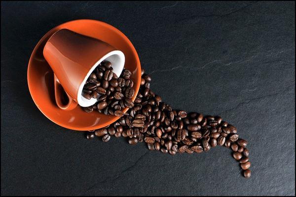 serwis ekspresów do kawy saeco warszawa
